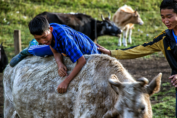 Eric_Hill_Mongolia_0044