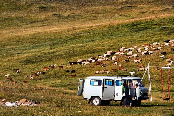 Eric_Hill_Mongolia_0052