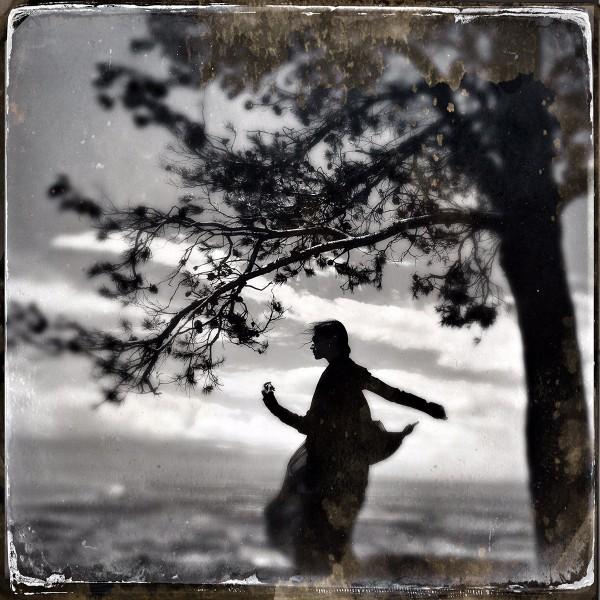 A Shadows Hug, a Tree's embrace ©Daniela Ubide