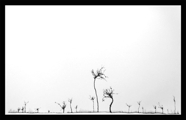 Traces ©Mahmoud Hamadani