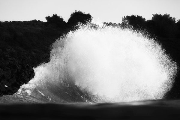 ©Cameron McFarlane
